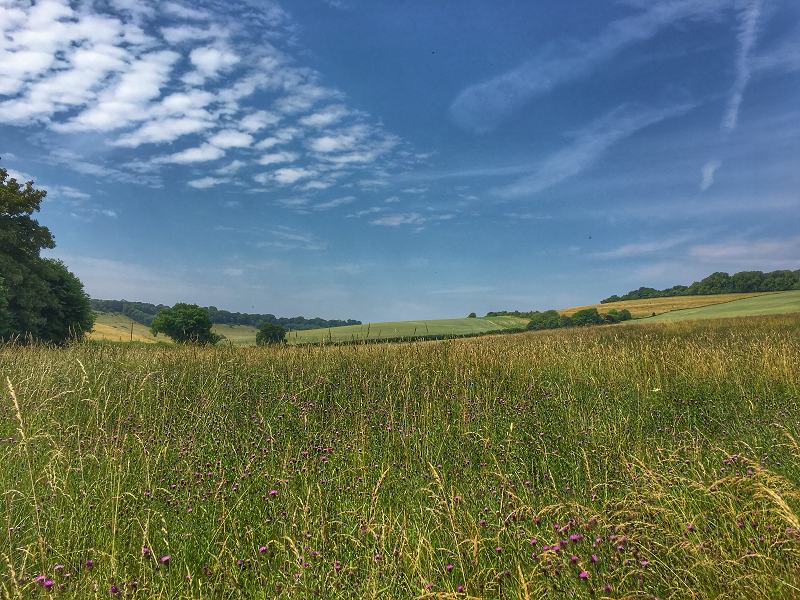 Stunning skies and fields to Fosbury Fort